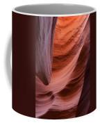 Rattlesnake Canyon 7811 Coffee Mug