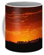 Red Arkansas Coffee Mug