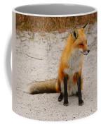 Red Fox 3 Coffee Mug