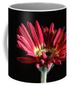 Red Gerbera 1 Coffee Mug
