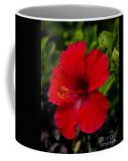 Red Hibiscus - Kauai Coffee Mug