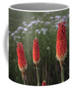 Red Hot Pokers Coffee Mug