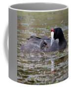 Red Knobbed Coot Coffee Mug