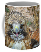 Red-tailed Hawk -5 Coffee Mug