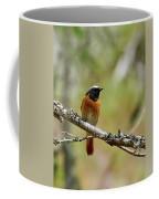 Redstart Coffee Mug