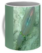 Reef Squid Coffee Mug