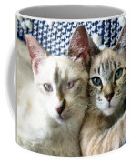 Rescued And Spoiled Coffee Mug