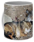 Resting Wolf Coffee Mug