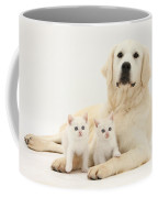 Retriever With Friendly Kittens Coffee Mug