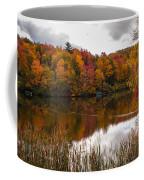 Ripshin Lake Coffee Mug