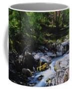 River In Wales Coffee Mug