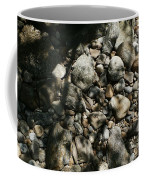 River Stones Coffee Mug