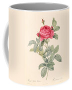 Rosa Gallica Pontiana Coffee Mug