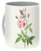 Rosa Indica Vulgaris Coffee Mug