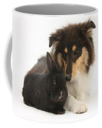 Rough Collie With Black Rabbit Coffee Mug