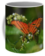 Ruddy Daggerwing Butterfly Coffee Mug