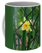 1 Sad Daffy Behind Bars Coffee Mug