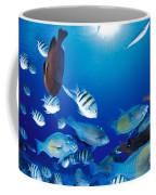 Saipan Marine Life Coffee Mug