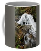 Salt Springs Waterfall Coffee Mug
