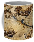 Schreiber's Fringe-fingered Lizard Coffee Mug