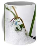 Scilla On Snow Coffee Mug