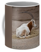 Scimitar Horned Dammah Coffee Mug