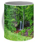 Scott Falls Coffee Mug