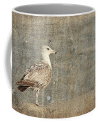 Seagull - Jersey Shore Coffee Mug