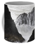 Seal Rock Waves And Rocks 2 Coffee Mug