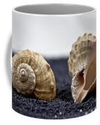 Seashells On Black Sand Coffee Mug