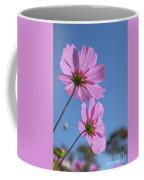 Sensation Cosmos Bipinnatus Pink Cosmos Standing Up Towerd Sky Coffee Mug