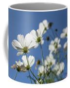 Sensation Cosmos Bipinnatus White Cosmos Standing Up Towerd Sk Coffee Mug