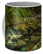 Shackleford Falls Coffee Mug