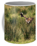 Siesta Coffee Mug