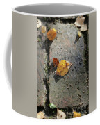 Silver Birch Leaves Lying On A Brick Path In A Cheshire Garden On An Autumn Day   England Coffee Mug
