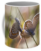 Silver-studded Blue Butterflies Coffee Mug