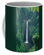 Sopoaga Falls Coffee Mug
