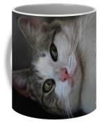 Soxx Coffee Mug