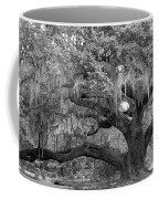 Sprawling Live Oak Coffee Mug