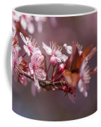 Spring Beauty Coffee Mug