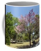 Spring Magnolia In Winter Park  Coffee Mug