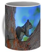 1- Squirrel Coffee Mug