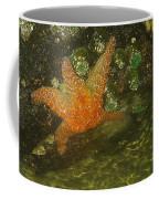 Starfish Coffee Mug