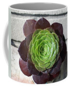 Succulent Rose Coffee Mug