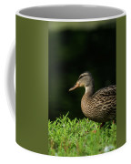 Summer Nature Coffee Mug