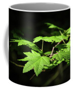 Sunny Summer Maple Coffee Mug