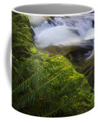 Sweet Creek Oregon 11 Coffee Mug