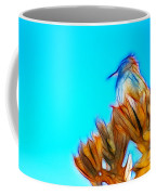 The Cactus Wren Coffee Mug