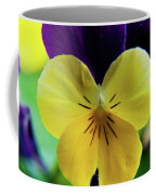 The Face Of A Pansy Coffee Mug
