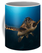 The Hawksbill Sea Turtle, Bonaire Coffee Mug by Terry Moore